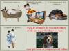 Contre l'abandon des animaux quels qu'ils soient