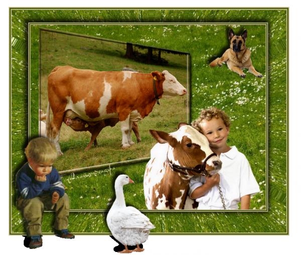 L'enfant et le veau