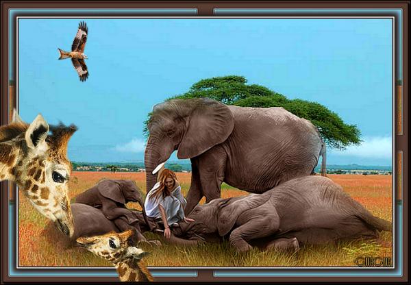 La dame aux éléphants