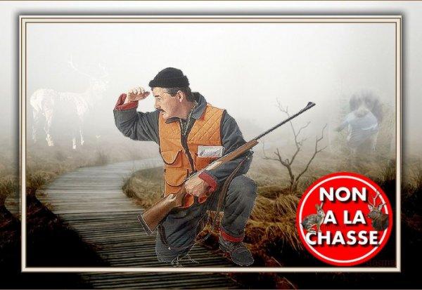 Non à la chasse