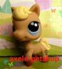 axele-petshop
