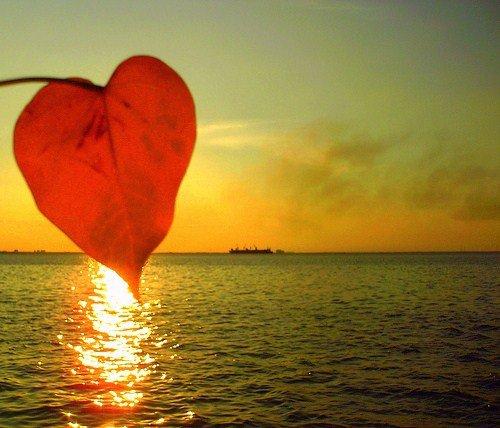 L'amour du Pére
