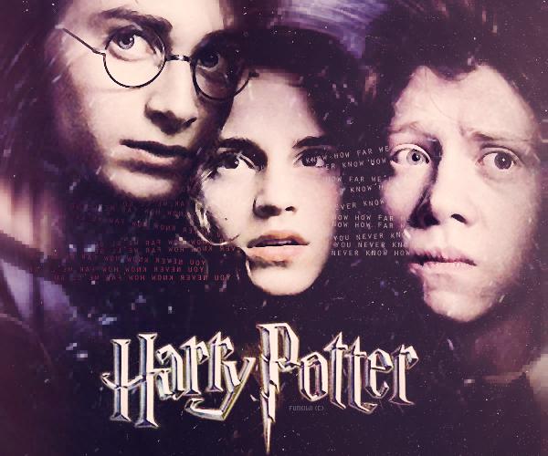 5# Harry Potter, la Saga Other Blog / Other Blog / Newsletter FUNKIWI, Everything we love !