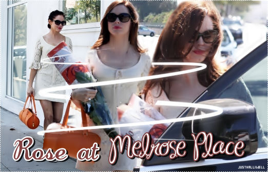 >> Article: Rose at Melrose Place - 11 Sept. 2010