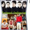 Torchwood-OneDirection