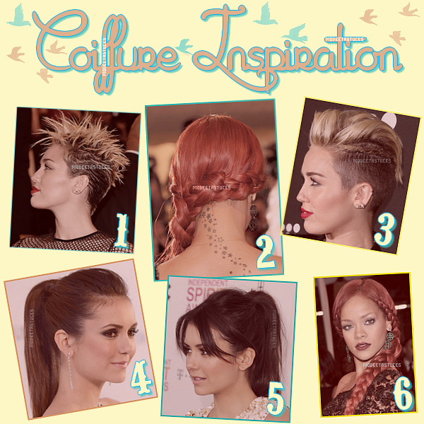 Article 43 : Coiffure Inspiration