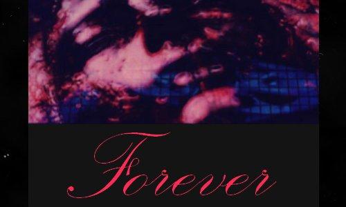 DIR EN GREY FOREVER