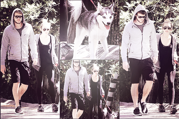 03/04/12 : Miley et Liam promenant Floyd, main dans la main à Toluca Lake.