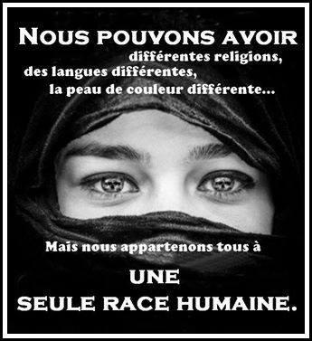 stop à la violence retrouvons notre humanité