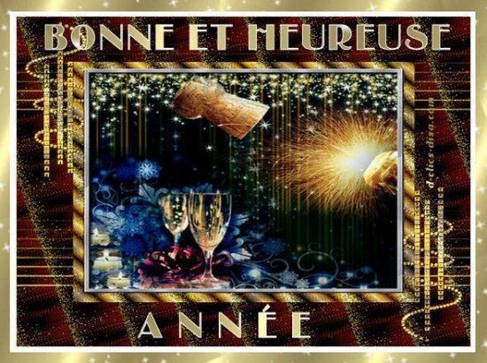 je vous souhaite une bonne année 2011 a tous