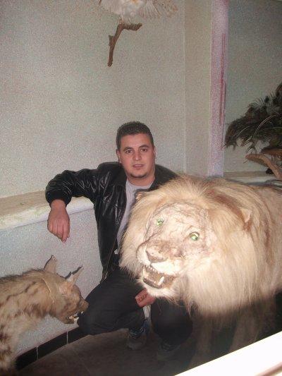 mon ex lion