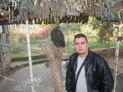 mon aigle