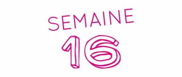 SEMAINE 16: LA GROSSESSE VOUS VAS BIEN!
