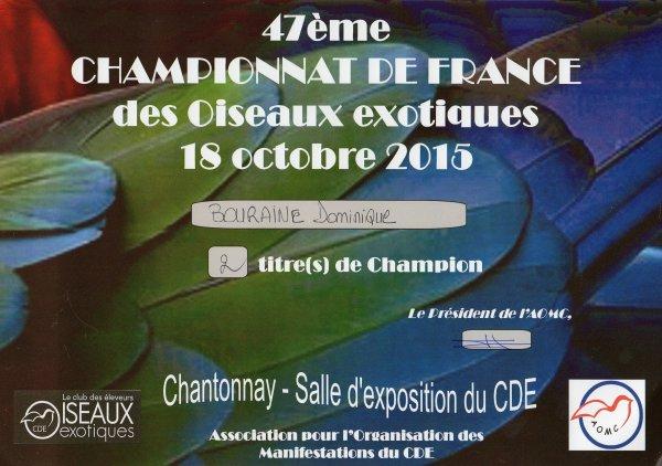 Mes résultats au Championnat de France CDE 2015