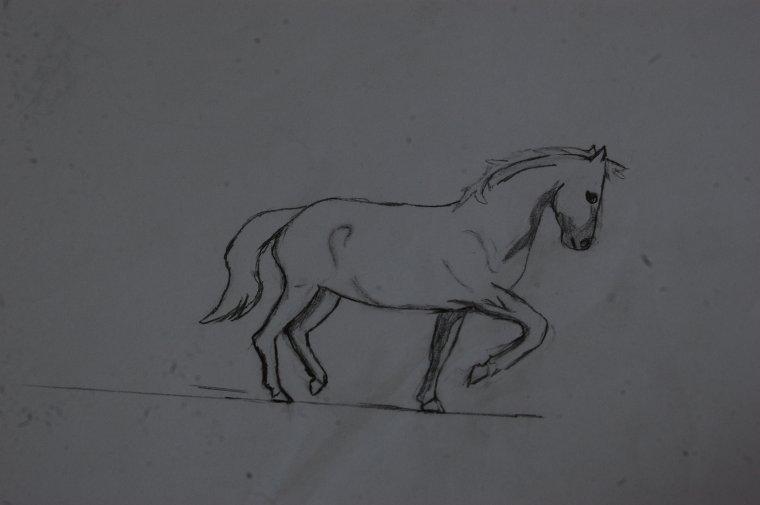 Toujours mes dessins
