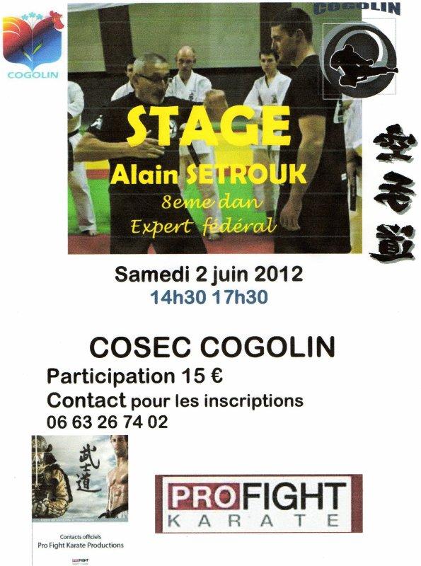 Stage de profight karaté avec Alain Setrouk