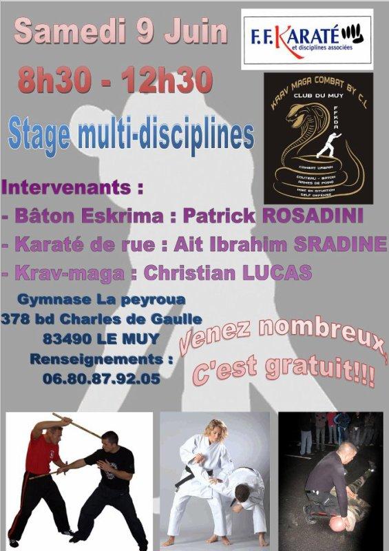 Stage multi disciplines le samedi 09 Juin 2012