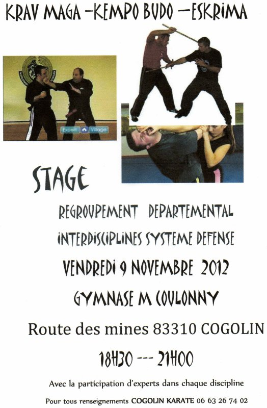 Stage multidisciplines systeme de defense