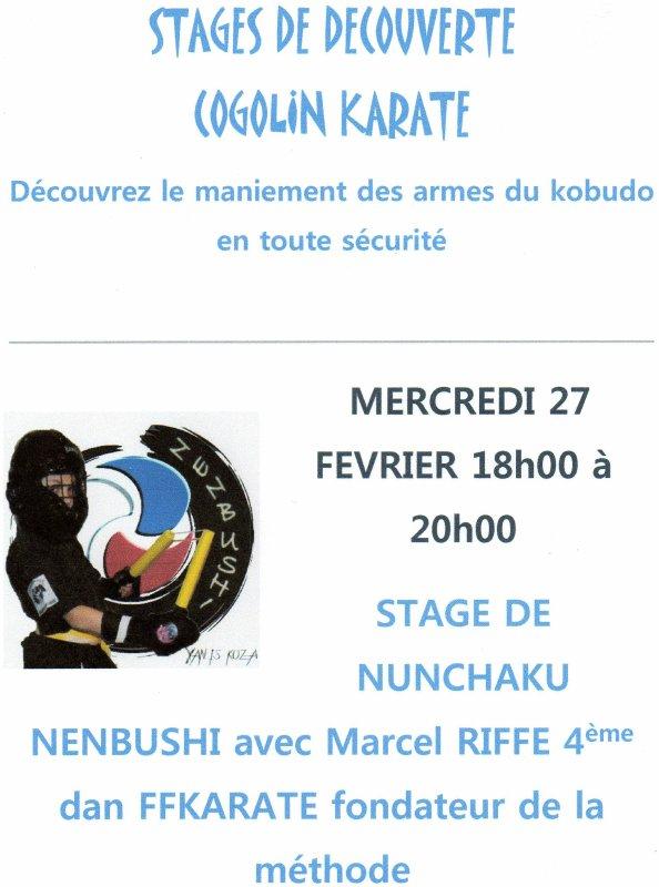 Stage de Nunchaku Nenbushi avec Marcel Riffe 4ème dan ffkaraté