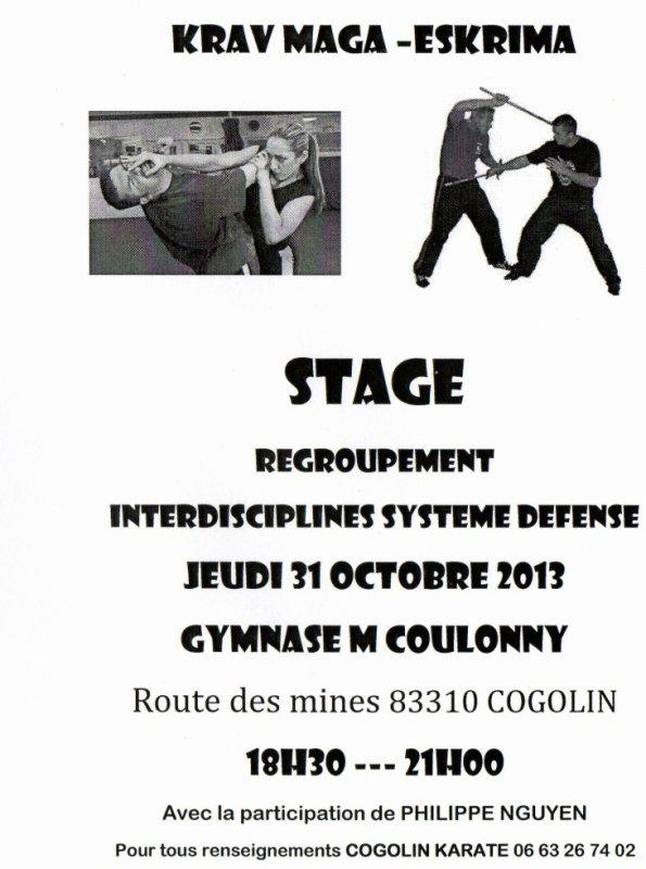 stage multidisciplines self défense avec Philippe Nguyen