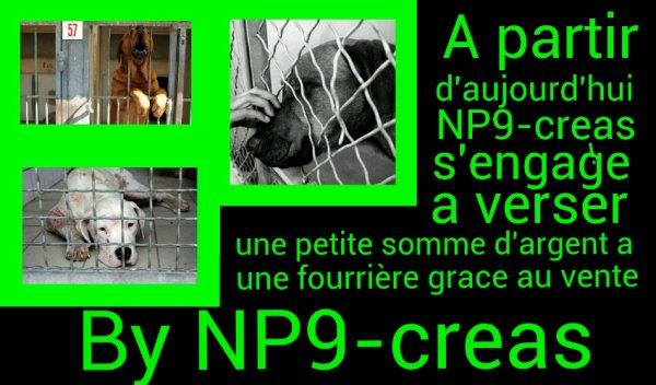 Bienvenu sur NP9-creas