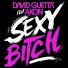David Guetta ft. Akon Sexy Bit