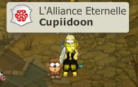 Présentation de Cupiidoon