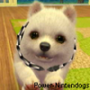 Power-Nintendogs