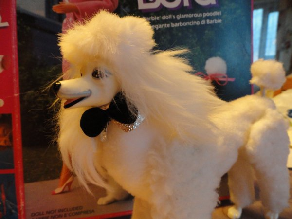 "My Lord, le beau chien de"" Barbie Day to Night "" de Mattel"