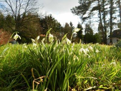Le printemps arrive !!!! yesss