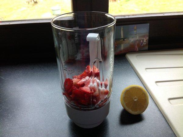 Panacotta aux spéculoos et coulis de fraises