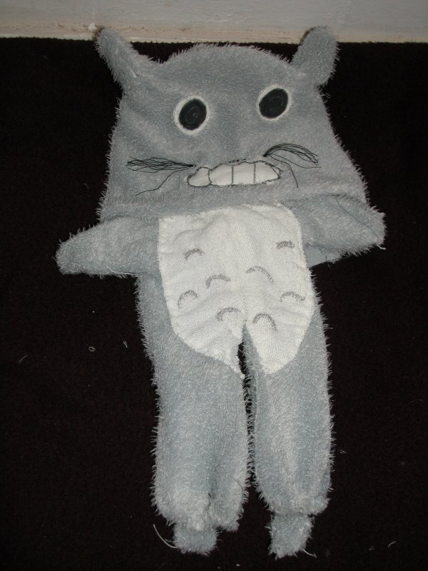 Cosplay Totoro !