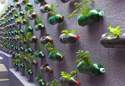 le mur végétal !!