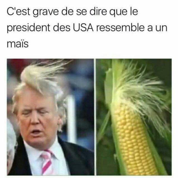 sacré maïs !!