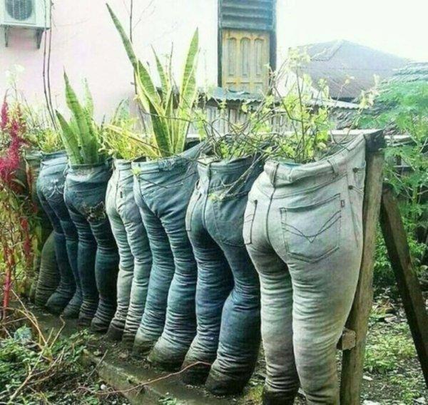 jardinage vestimentaire !!