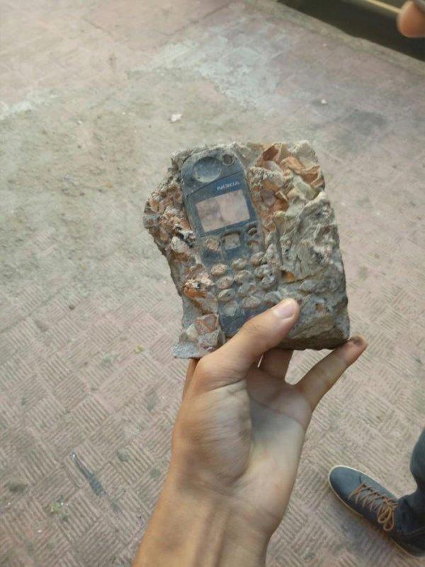 le fossile