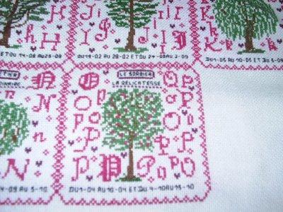 l'arbre de vie de novembre le sorbier la delicatesse