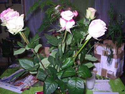les roses de liliane