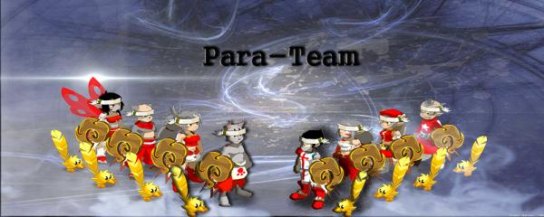 Présentation de la Para-team