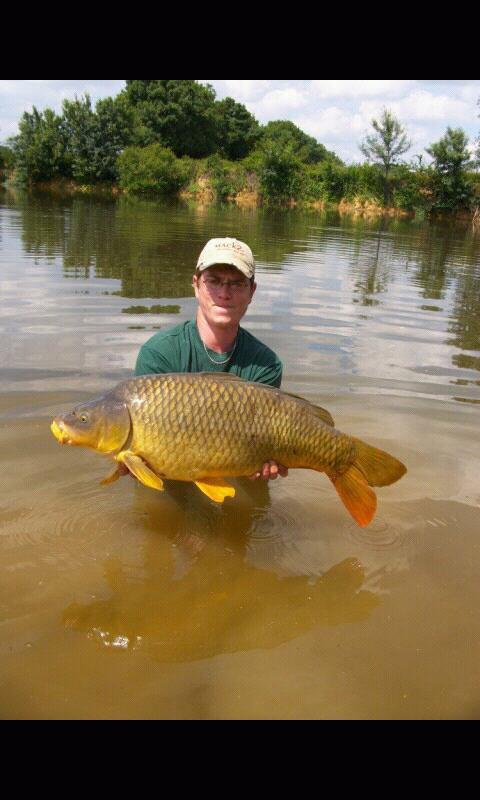 La pêche a la carpe est une superbe pêche avec de la joix ou du dégout