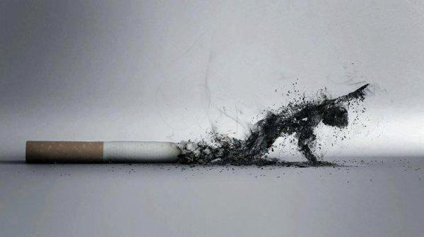 Fume pas ta vie