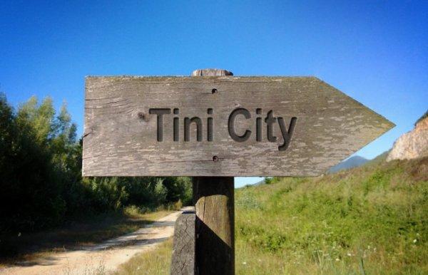 Tinicity