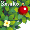 AC-Kesako