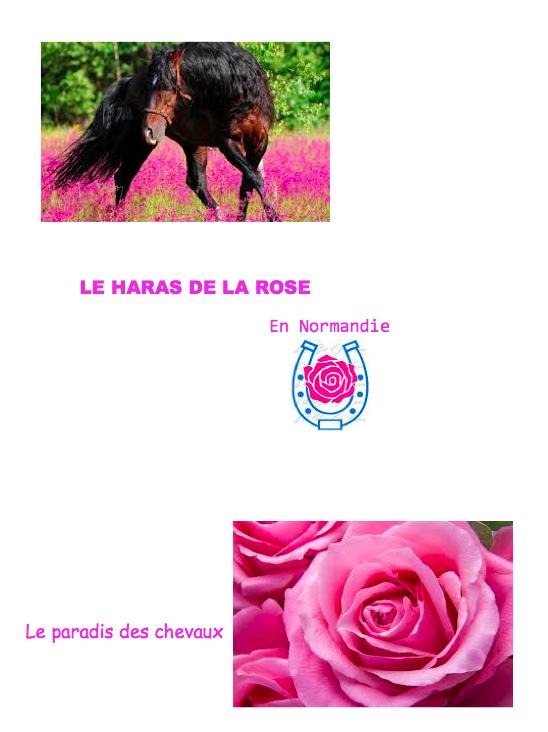 Le Haras de la Rose