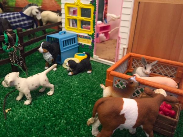 Une maison pour des animaux ?