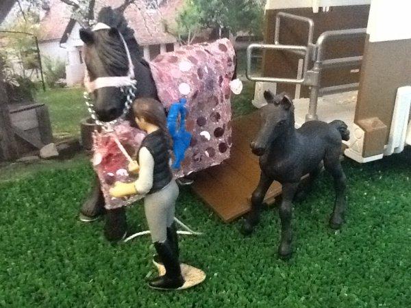 Le nouveau cheval de Tess