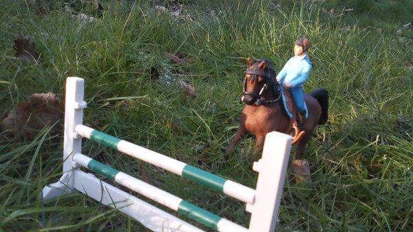 Rose a-t-elle trouvée le cheval de ses rêves ?