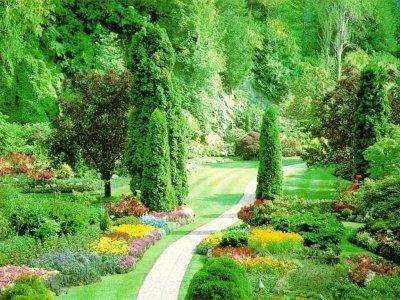 Mon jardin imaginaire blog de x clemence lilloise62 x for Jardin imaginaire