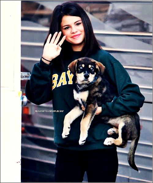 #Selena et son nouveau chien , Baylor , ce serait son sixième chien.Il semblerait que Justin et elle l'ai adopté ensemble.#