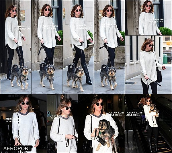 06/11/2015 : Dakota  a été vue en sortant de chez elle pour promenée son chien Zeppelin à West Village  Plus tard surment dans l'après-midi , Dakota a été photographié , à l'aéroport  de LAX , en compagnie de son chien Zeppelin. Qu'en pensez-vous ?